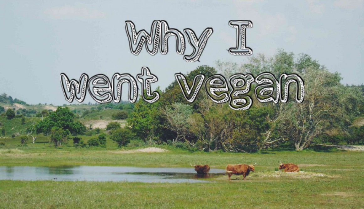 Why am I Vegan!?
